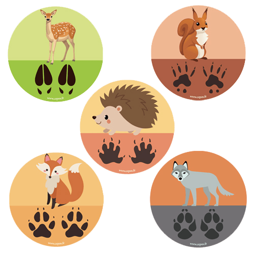 CEP Jeu de stickers empreintes d animaux 7010-25