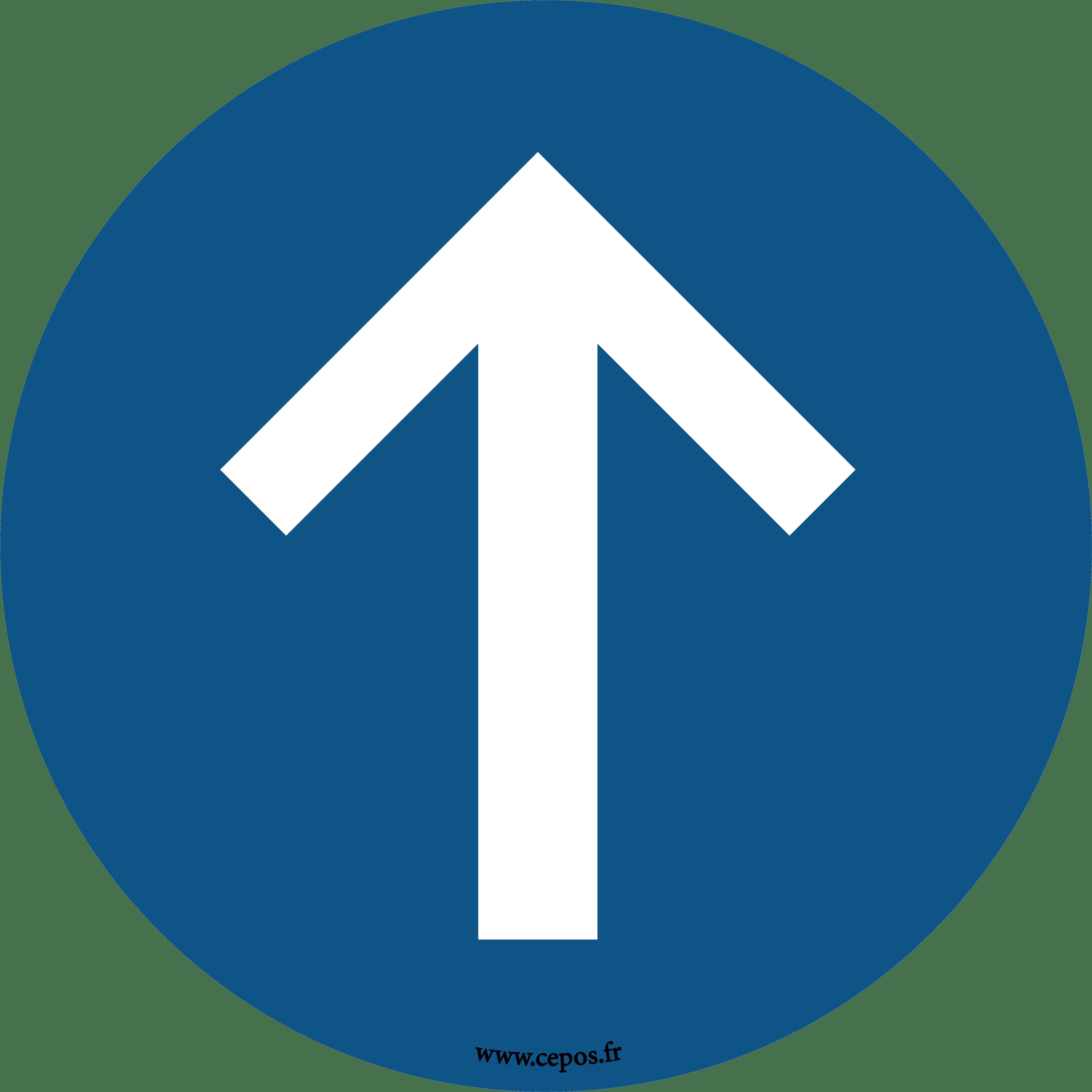 CEP Stickers pour sol Sens de circulation obligatoire 7010-604